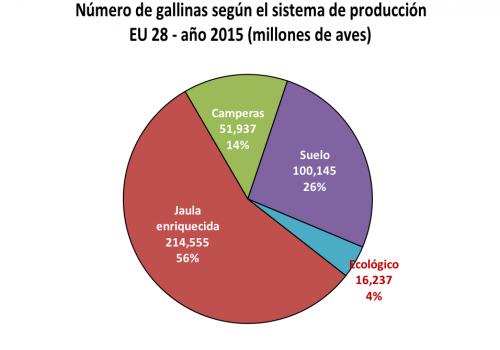 sector_produccion_gallinas